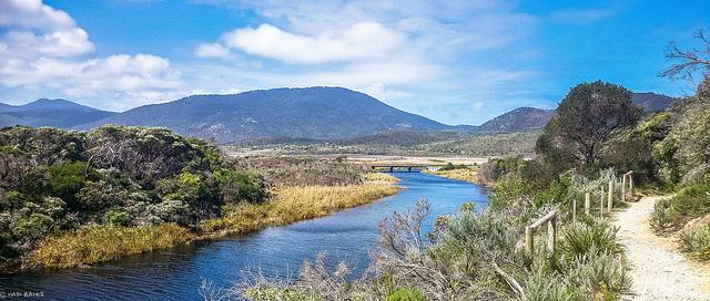 The Tidal River