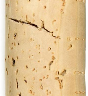 How to make cork name card
