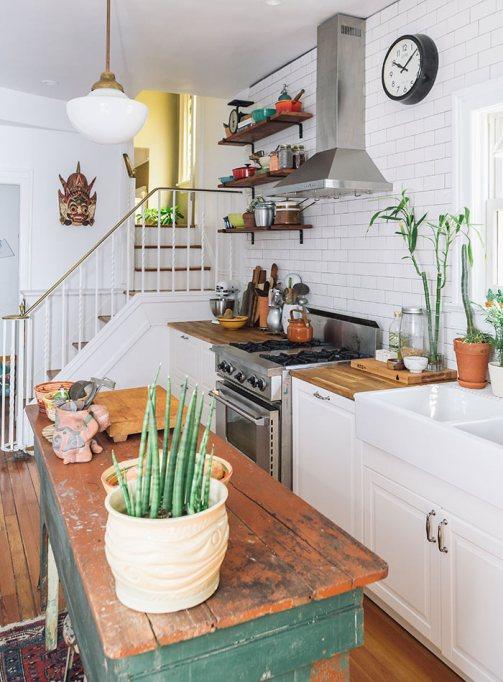 succulents plants in kitchen