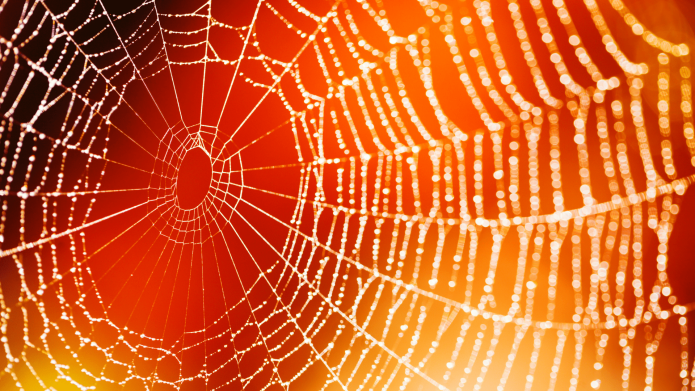 This Spooky Halloween Spider Web Craft