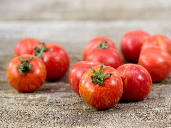 Pink Vernissage Tomato