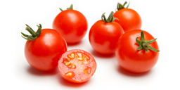 Isolated tomatoes