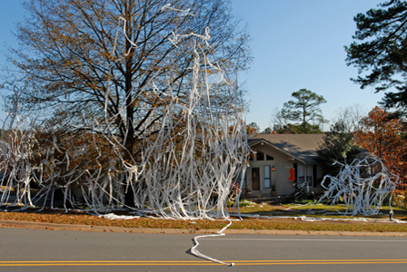Toilet papered house