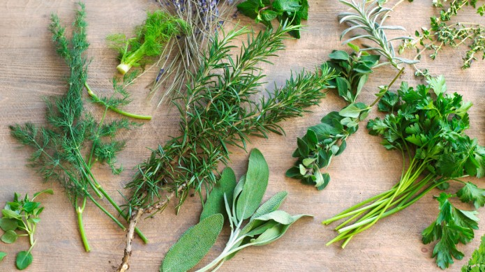 6 Uncommon Herbs You Might Start