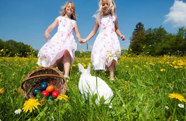 Live Easter pets: Buying bunnies or
