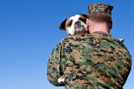 Help care for a soldier's pet