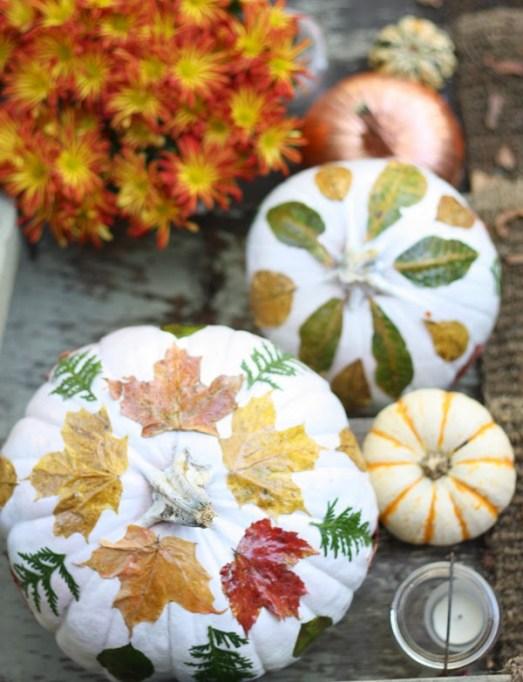 Leafy Pumpkins