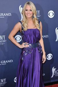 Who is American Idol top earner
