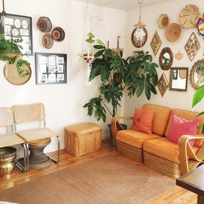 Big, Leafy House Plants: Money Tree Next to Rattan Love Seat and Ottoman