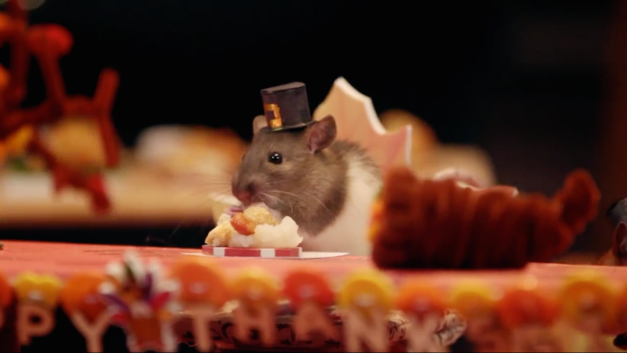 A Tiny Hamster Thanksgiving is the