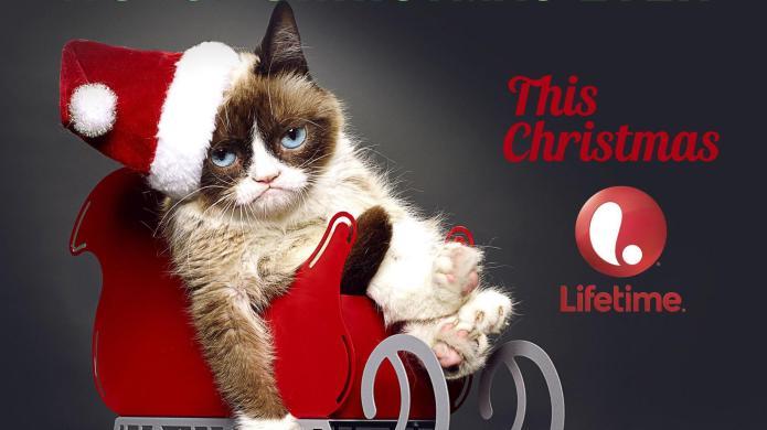 Grumpy Cat vs. Kirk Cameron: Which