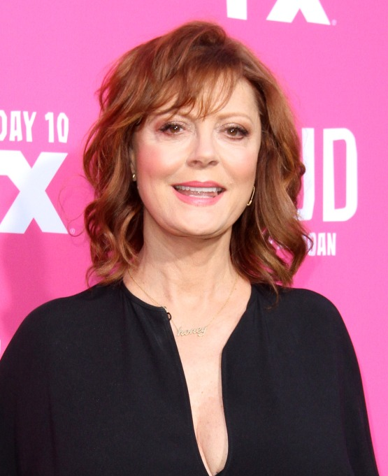 Susan Sarandon at the Feud: Bette and Joan FYC Event