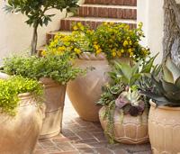 Umbria planters