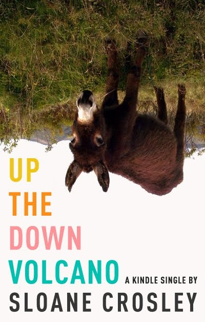 Up the Down Volcano cover