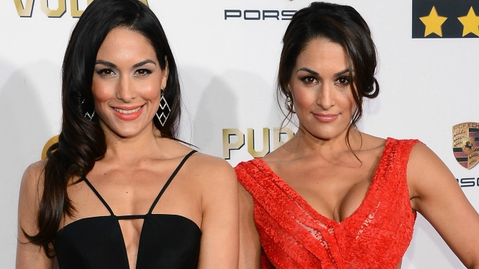 The Bella Twins' 17 hottest photos