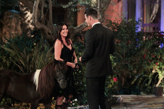 The Bachelor Season 20 premiere mini-horse