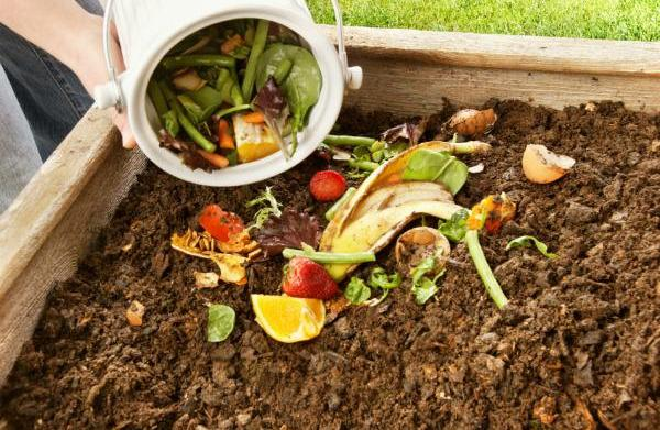 30 Ways to reduce your environmental