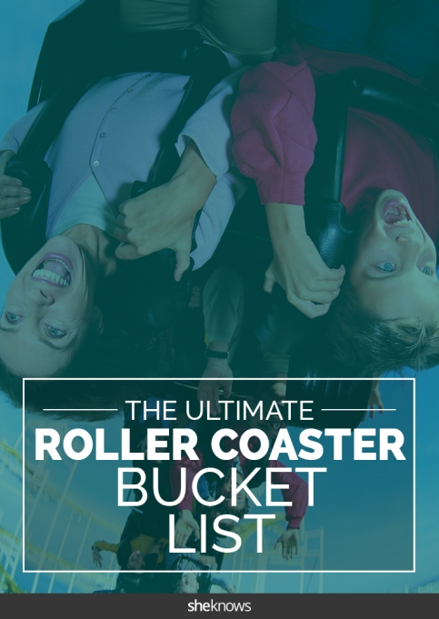 rollercoaster bucket list