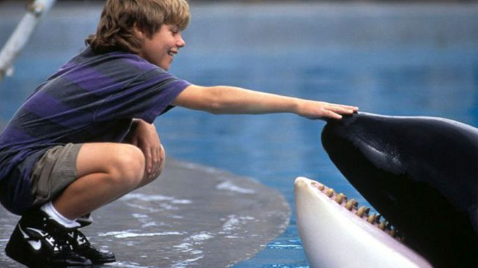 15 Movies About Animals That Always Make Us Cry: Free Willy