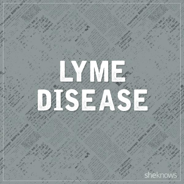 Lyme disease graphic