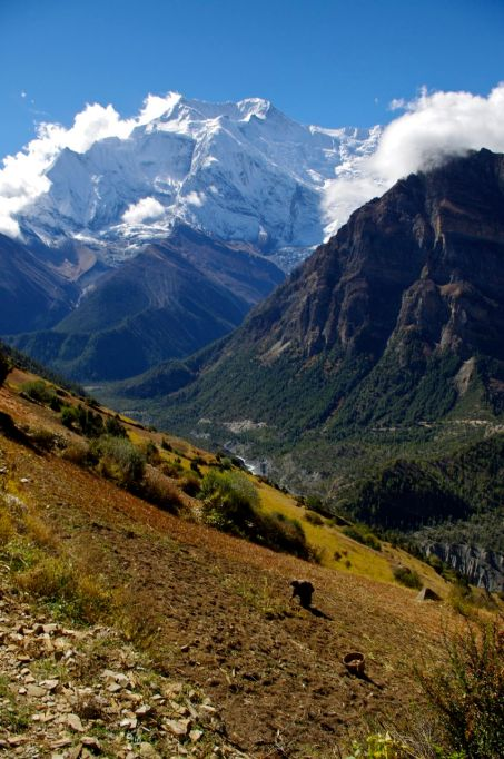 Beautiful Adventure Destinations: Hike The Annapurna Circuit in Nepal