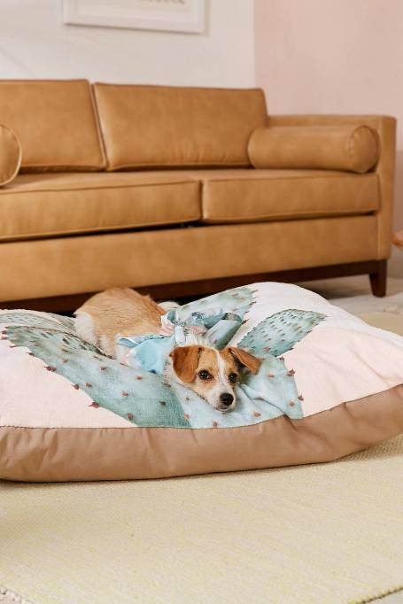 Modern Southwestern Decor: Get your pets in on the fun with this cactus bed