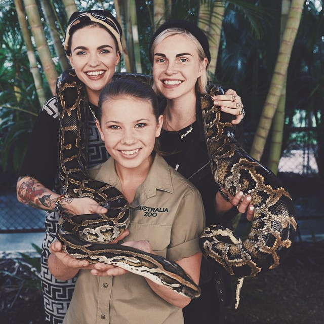bindi-irwin-snake-ruby-rose