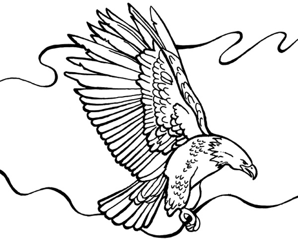 Bald eagle soaring coloring page printable