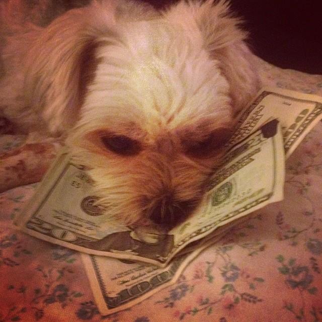 Mo' money, mo' problems. My problems.