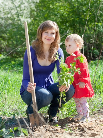 Woman and daughter planting a tree