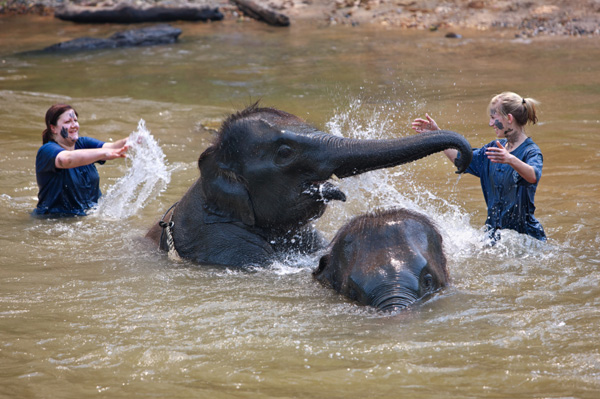 Woman on volunteer vacation in Thailand protecting elephants