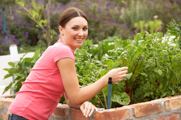 Pruning veggie garden