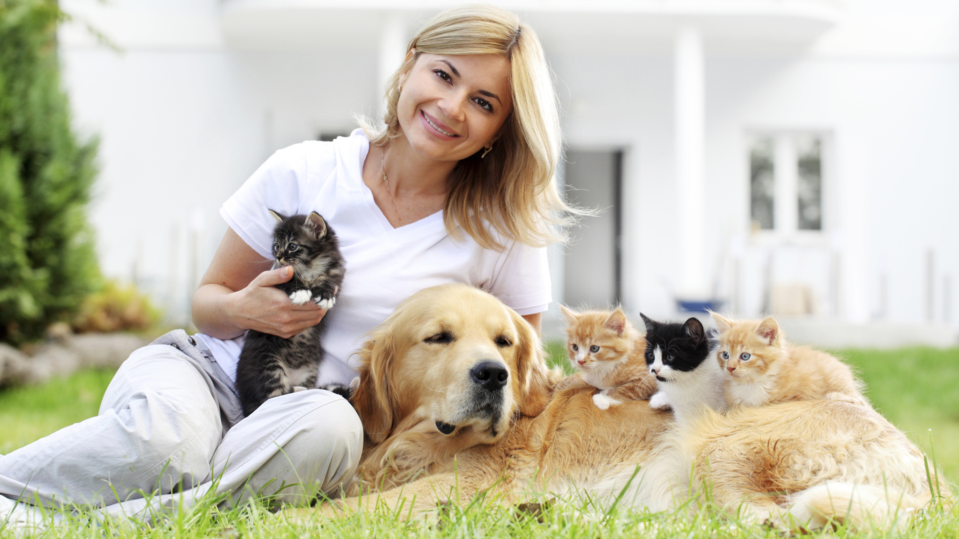 10 Things you can learn from your pet – SheKnows