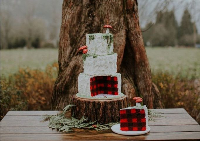 Fall Wedding Cakes: This cake is decorated with edible tattoos and moss, and buffalo check plaid inside