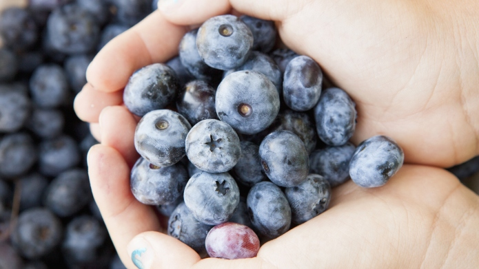 Why blueberries do wonders for your