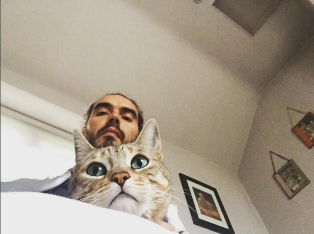 Celebs who love cats: Russell Brand