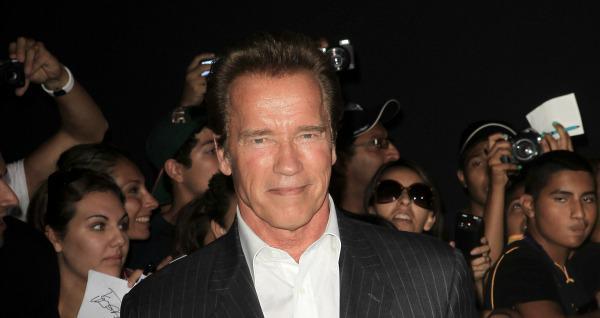 Arnold Schwarzenegger: Politicians who dig side