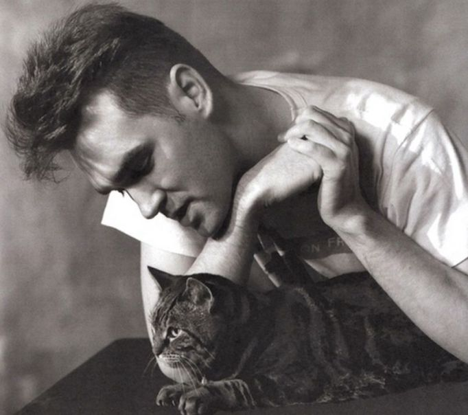 Celebs who love cats: Morrissey