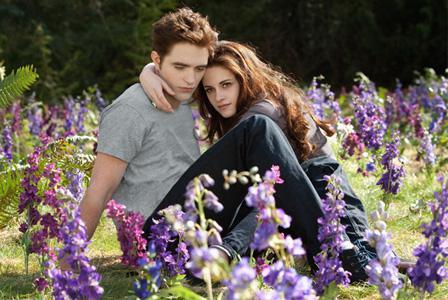 Twilight's Rob Pattinson was 'starstuck' meeting