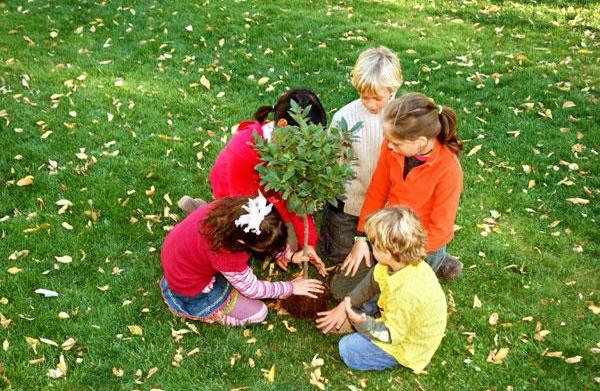 Activities to celebrate Earth Day with