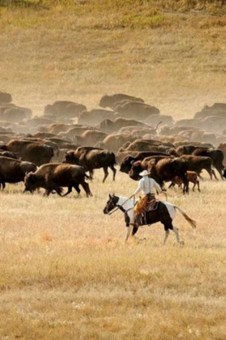 affordable-fall-getaways-custer-south-dakota