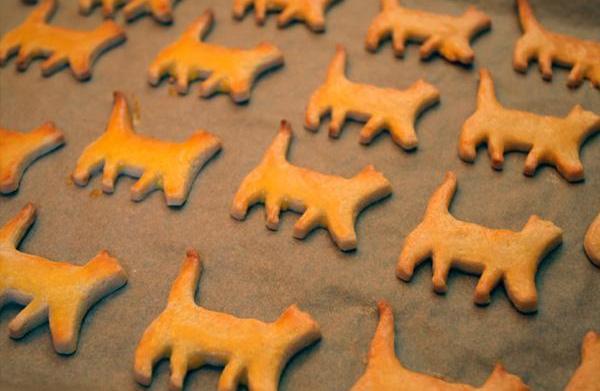 Spooktacular Halloween cookies!