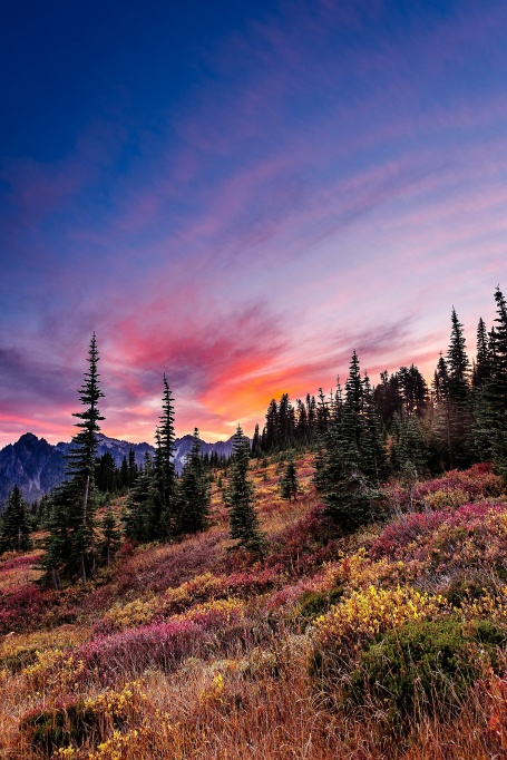 The Best National Parks for Fall Colors