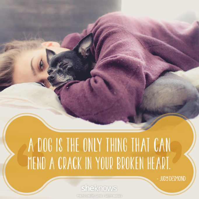 """""""A dog is the only thing that can mend a crack in your broken heart."""" —Judy Desmond"""