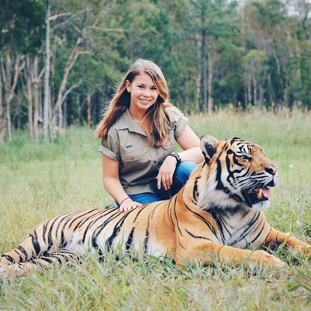 bindi-irwin-tiger
