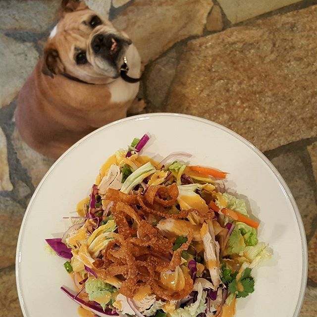 Chrissy Teigen Mouth Watering Recipes: Chinese chicken salad with house-fried wonton strips | Celebrity Eats