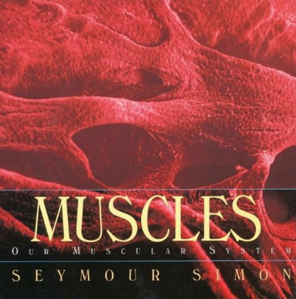 muscles book
