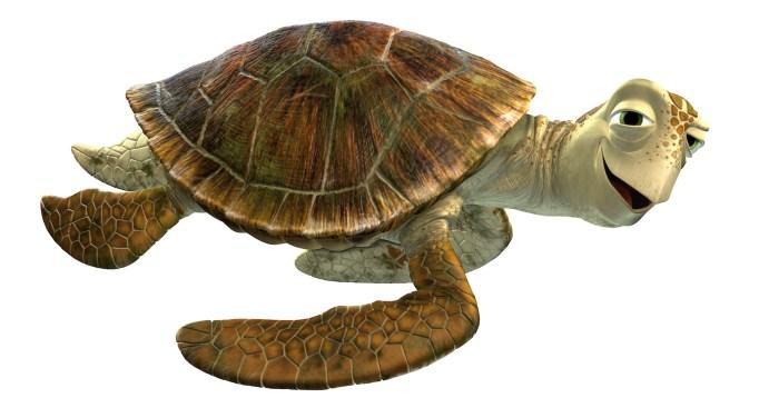 Turtles as transportation