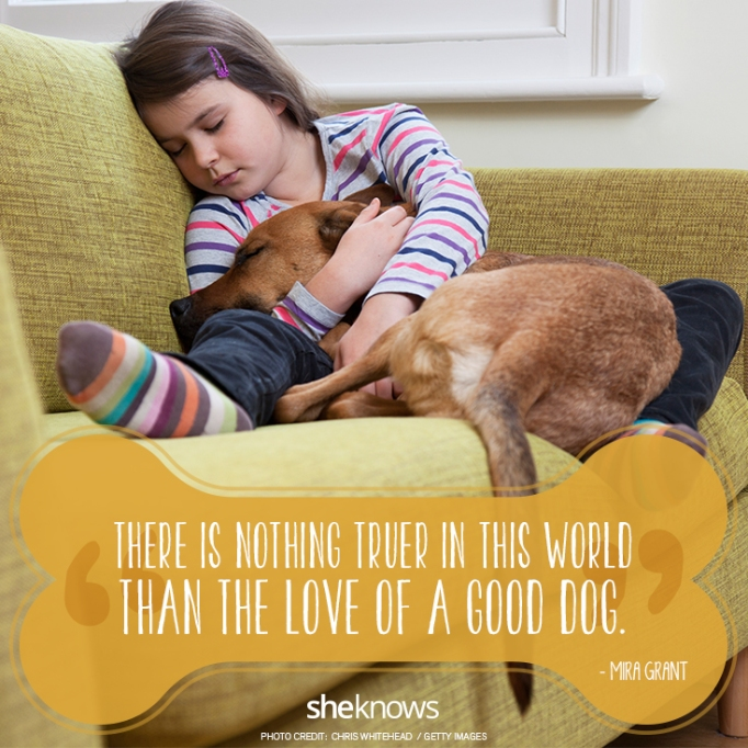"""""""There is nothing truer in this world than the love of a good dog."""" —Mira Grant"""