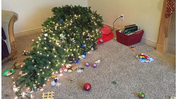 25 hilarious Christmas tree FAILS that